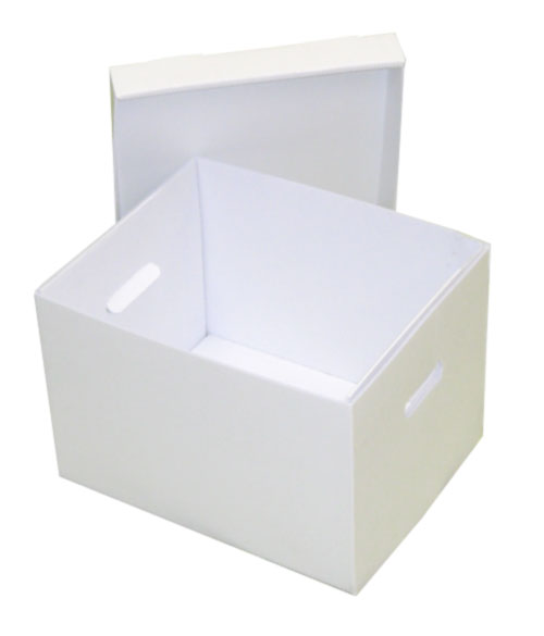 File record storage box